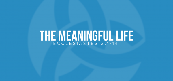 The Meaningful Life Image